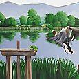 Canards sur l'étang de Sologne