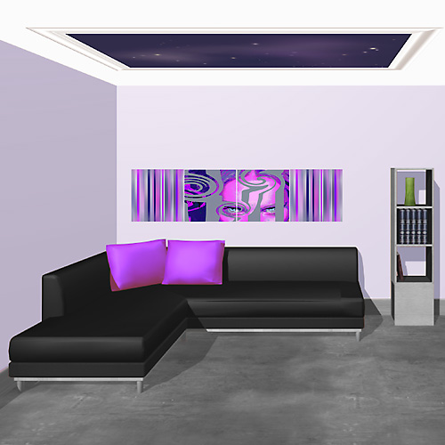Salon noir blanc et violet for Deco salon noir blanc violet
